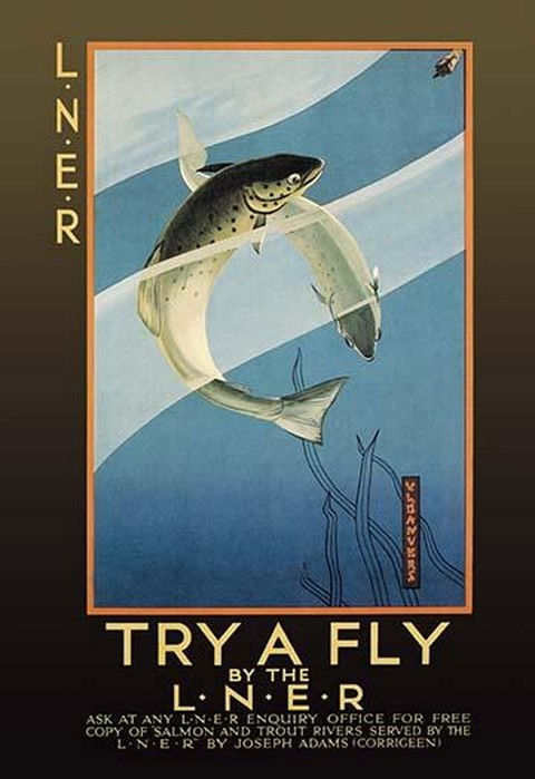 Try a Fly by V.L. Danvers - Art Print