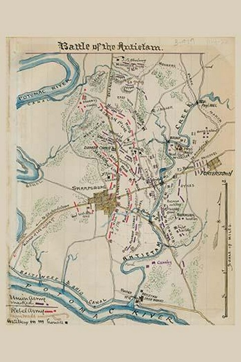 Battle of Antietam or Sharpsburg - Art Print