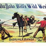 Buffalo Bill: Saddling a Bucker - Art Print