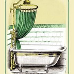 Bath and Shower Combo - Art Print