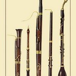 Dolciano, Oboe da Caccia, Oboe, Basset Horn and Bassoon by Theodore Thomas - Art Print