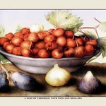 A Dish of Cherries with Figs and Medlars by Giovanna Garzoni - Art Print