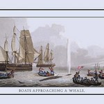 A Boat Approaching a Whale by J.H. Clark - Art Print
