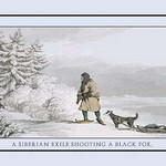 A Siberian Exile Prepares To Shoot A Black Fox by Atkinson - Art Print