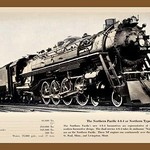 Northern Pacific - Art Print