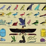 Birds and Other Creatures from Egyptian Monuments by John Gardner Wilkinson - Art Print