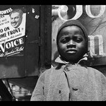 A Harlem Newsboy by Gordon Parks - Art Print