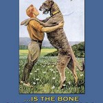 Charity: A Bone to the Dog by Jack London - Art Print