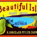Beautiful Isle Brand Fancy Pears - Art Print