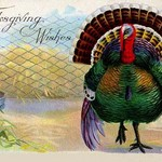 Thanksgiving Wishes - Art Print