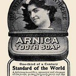 Arnica Tooth Soap - Art Print
