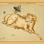 Aries and Musca Borealis by Aspin Jehosaphat - Art Print