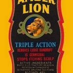 Amber Lion Triple Action - Art Print