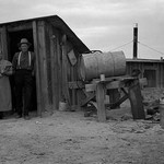 Basement Home by Dorothea Lange - Art Print