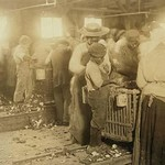 African American Children in Oyster Shucking Factory - Art Print