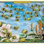 A Swarm of Spelling Bees by Richard Kelly - Art Print