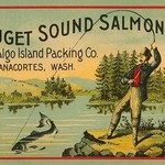 Puget Sound Salmon - On the Fly by Schmidt Litho Co. - Art Print
