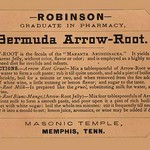Bermuda Arrow-Root - Art Print