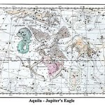 Aquila - Jupiter's Eagle by Alexander Jamieson - Art Print