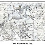 Canis Major the Big Dog by Alexander Jamieson - Art Print