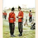 43rd Oxfordshire Light Infantry by Walter Richards - Art Print