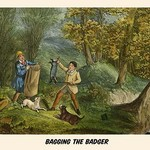 Bagging the Badger by Henry Alken - Art Print