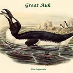 Alca Impennis - Great Auk by John Gould - Art Print