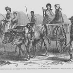 African American Slave attends farmers on their way to the Federal Commissary for Provisions by Frank Leslie - Art Print