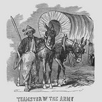 African Americans serving as Teamsters by Frank Leslie - Art Print