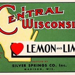 Central Wisconsin Lemon and Lime - Art Print