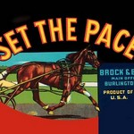 Set the Pace - Art Print