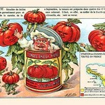 Tomate (Tomatoes) by M. Halle - Art Print