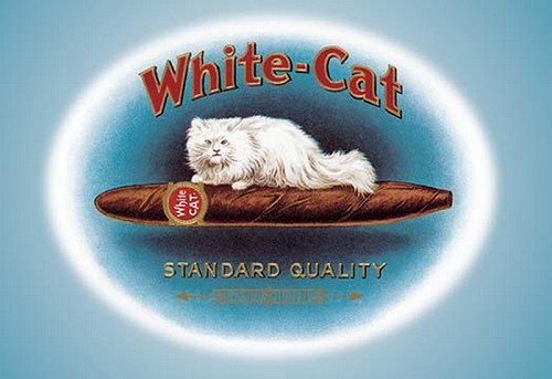 White-Cat Cigars - Art Print