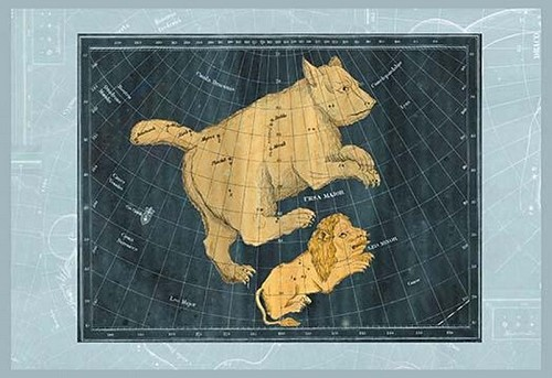 Ursa Major and Leo Minor - Art Print