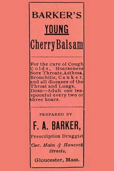 Barker's Young Cherry Balsam - Art Print
